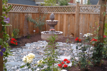 Sustainable Garden Design and Consultation