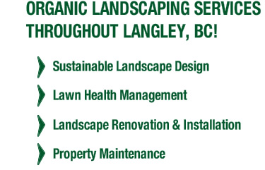 Organic Landscaping Services Throughout Langley, BC! Landscape renovation & installation, property maintenance, sustainable landscape design, lawn health management.