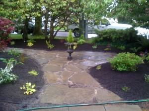 Another view of a Flagstone pathway in Richmond - Front retaining garden in Walnut grove : BEFORE - Ladybug Landscaping Ltd