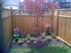 Backyard Garden in Surrey : AFTER  - Ladybug Landscaping Ltd