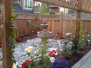 Backyard reno in South Surrey : AFTER - Ladybug Landscaping ltd
