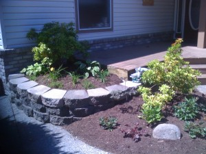Front retaining garden in Walnut grove : AFTER - Ladybug Landscaping Ltd