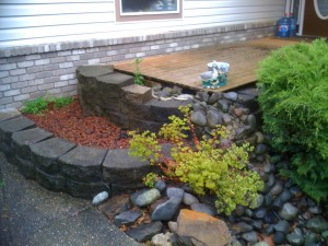 Front retaining garden in Walnut grove : BEFORE - Ladybug Landscaping Ltd
