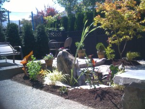 Landscape reno backyard - Ladybug Landscaping Ltd